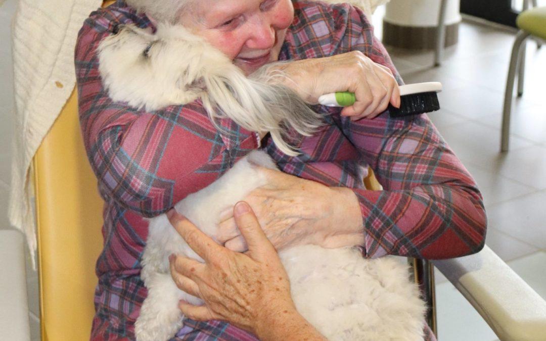 La petite chienne Malya à la rencontre des résidents de l'EHPAD Le Thomassin