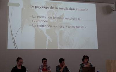 Médiation animale : une ovation pour Malya !